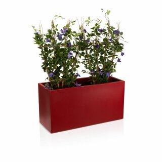 Plant Trough VISIO 50 Plastic red matt