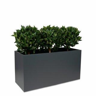 Artificial plant TESSA cherry laurel ball 50