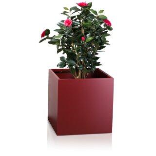Planter CUBO 50 Fibreglass red matt