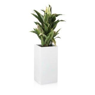 Planter TORRE 60 Fibreglass white matt