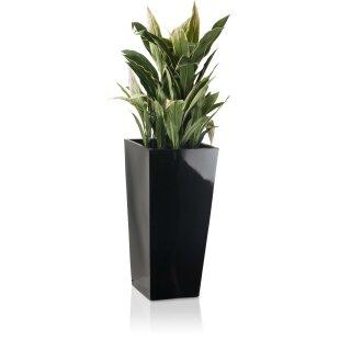 Planter LAVIA 70 Fibreglass black glossy