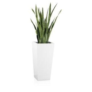 Planter LAVIA 70 Fibreglass white glossy