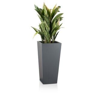 Planter LAVIA 70 Fibreglass grey matt