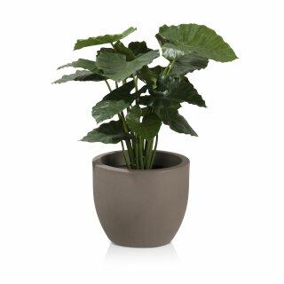 Plant Pot TARRO 35 Plastic cappuccino matt