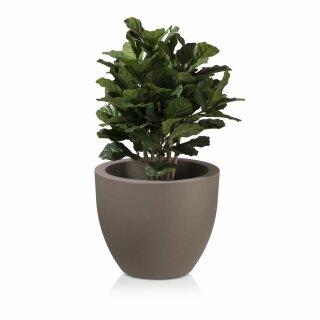 Plant Pot TARRO 50 Planter cappuccino matt