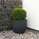 Plastic Planter TARRO 27 charcoal grey matt