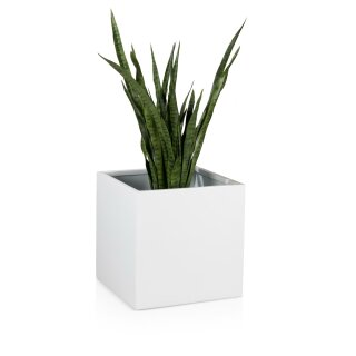 Planter CUBO 50 Fibreglass white glossy