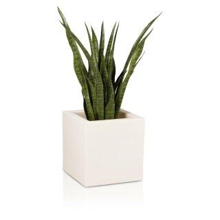Plastic Planter CUBO 40 white matt