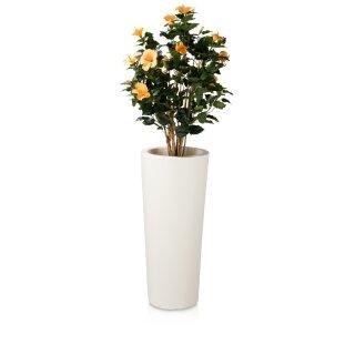 Plant Pot CONO 90 Plastic white matt
