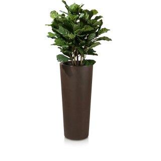 Plant Pot CONO 90 Plastic bronze matt