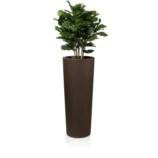 Plant Pot CONO 110 Plastic bronze matt