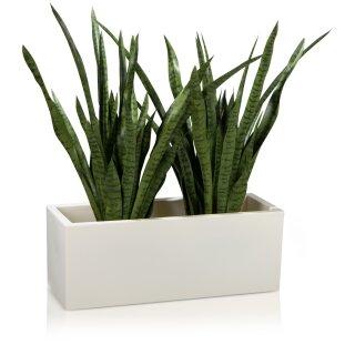Plastic Planter MURO 30 Plant Trough white matt