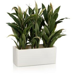 Plant Trough MURO 25 Plastic white matt