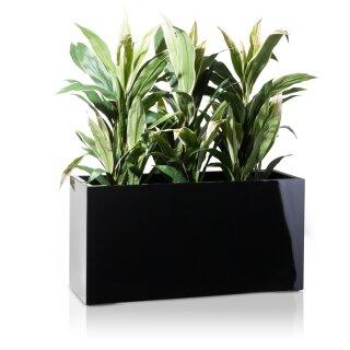 Plant Trough VISIO 40 Fibreglass black glossy