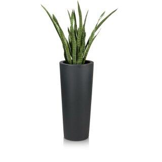 Plastic Planter CONO 90 charcoal grey matt