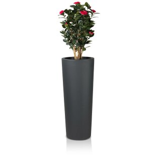 Plastic Planter CONO 110 charcoal grey matt