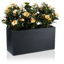Plant Trough VISIO 50 Fibreglass charcoal-grey matt