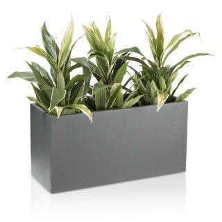Plant Trough VISIO 40 Fibreglass grey matt