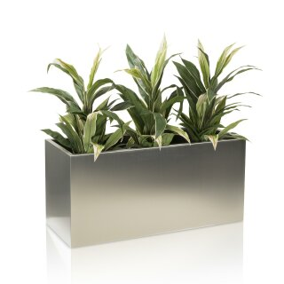 Plant Trough VISIO 50 Stainless Steel brushed